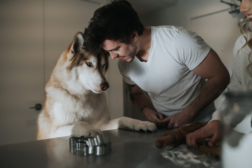 Couple and their dog baking
